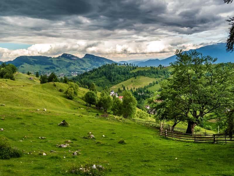 romania_field_grass_meadow_108699_800x600